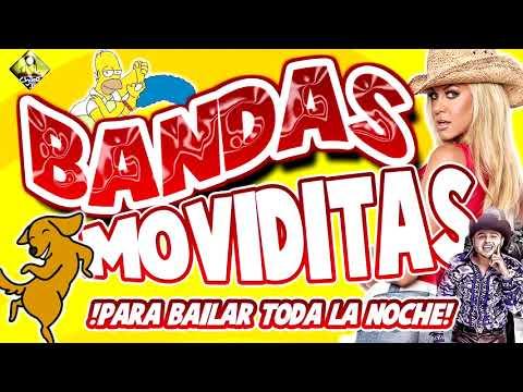 Bandas Moviditas Para Bailar Toda La Noche Para Todo Tipo De Fiestas