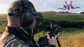 Stalking Roebucks in Cornwall with Ian Harford