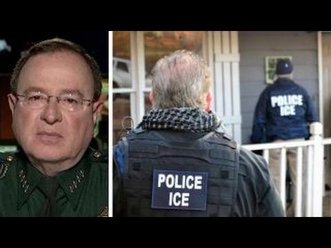 Florida sheriff: Illegal criminals are...