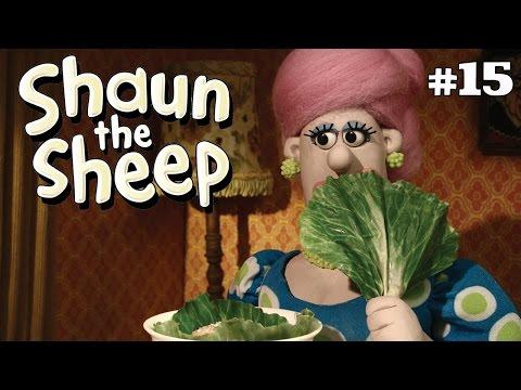 Shaun the Sheep - Piknik Romantis [Frantic Romantic]