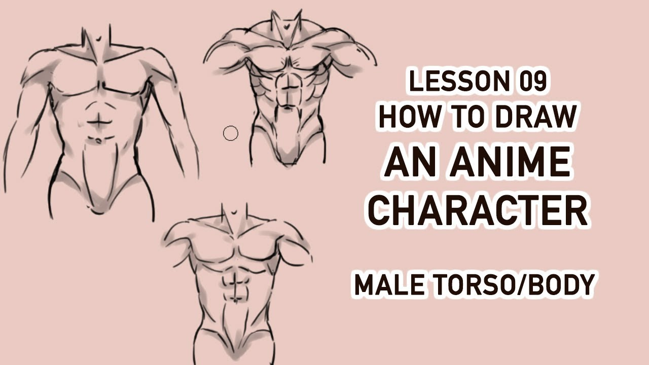Draw anime character tutorial 09 male torso male body
