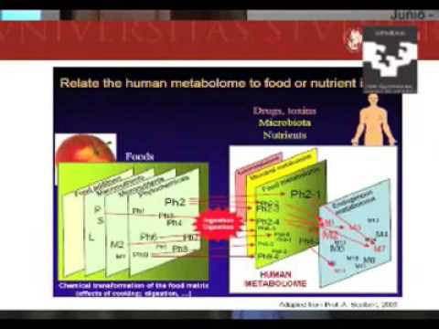 Metabolomics in the new nutritional era