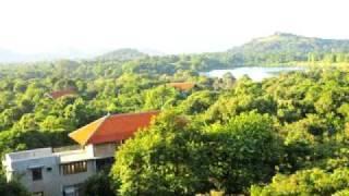 Wild Grass Nature Resort, Sigiriya, Sri Lanka