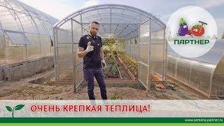 видео: ОЧЕНЬ КРЕПКАЯ ТЕПЛИЦА!