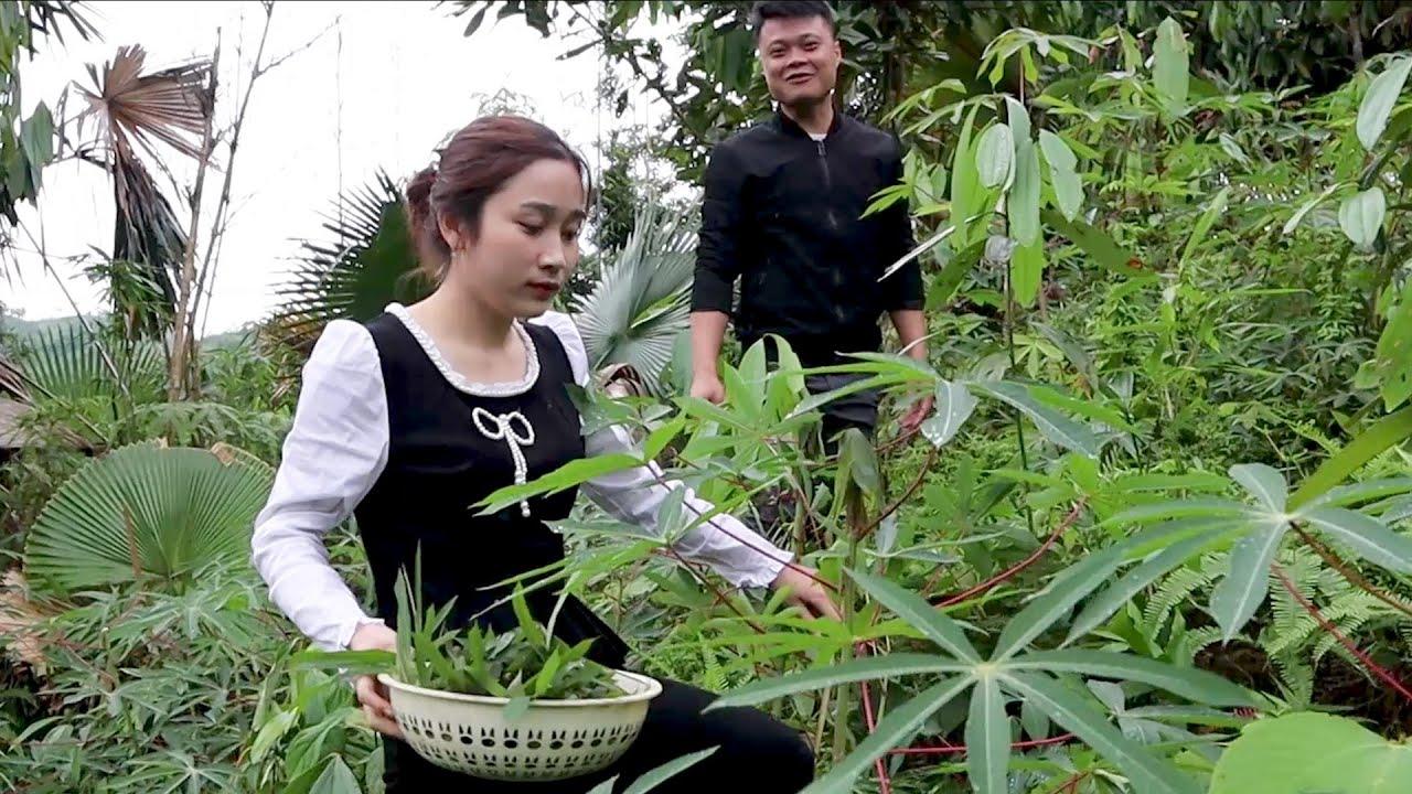 Nộm rau sắn, Rau sắn muối chua đặc sản quê nhà - Ẩm thực ngày mưa mùa nào thức đó