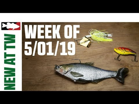 c7bc2af37 Video Vault - What's New At Tackle Warehouse 5/1/19