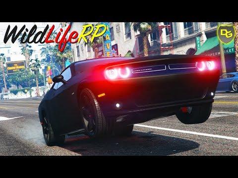 WIR machen die Stadt UNSICHER! 🚦 - GTA 5 Real Life Online #4 - WildLifeRP - Daniel Gaming
