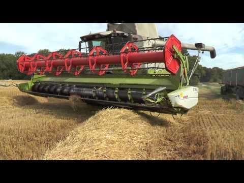 Claas Lexion 580 Combine harvesting winter barley outside Väskinde Gotland August 2015