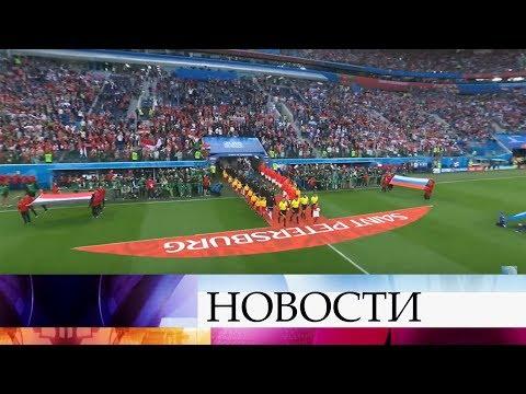 Сборная России показала блестящую игру в матче с Египтом.