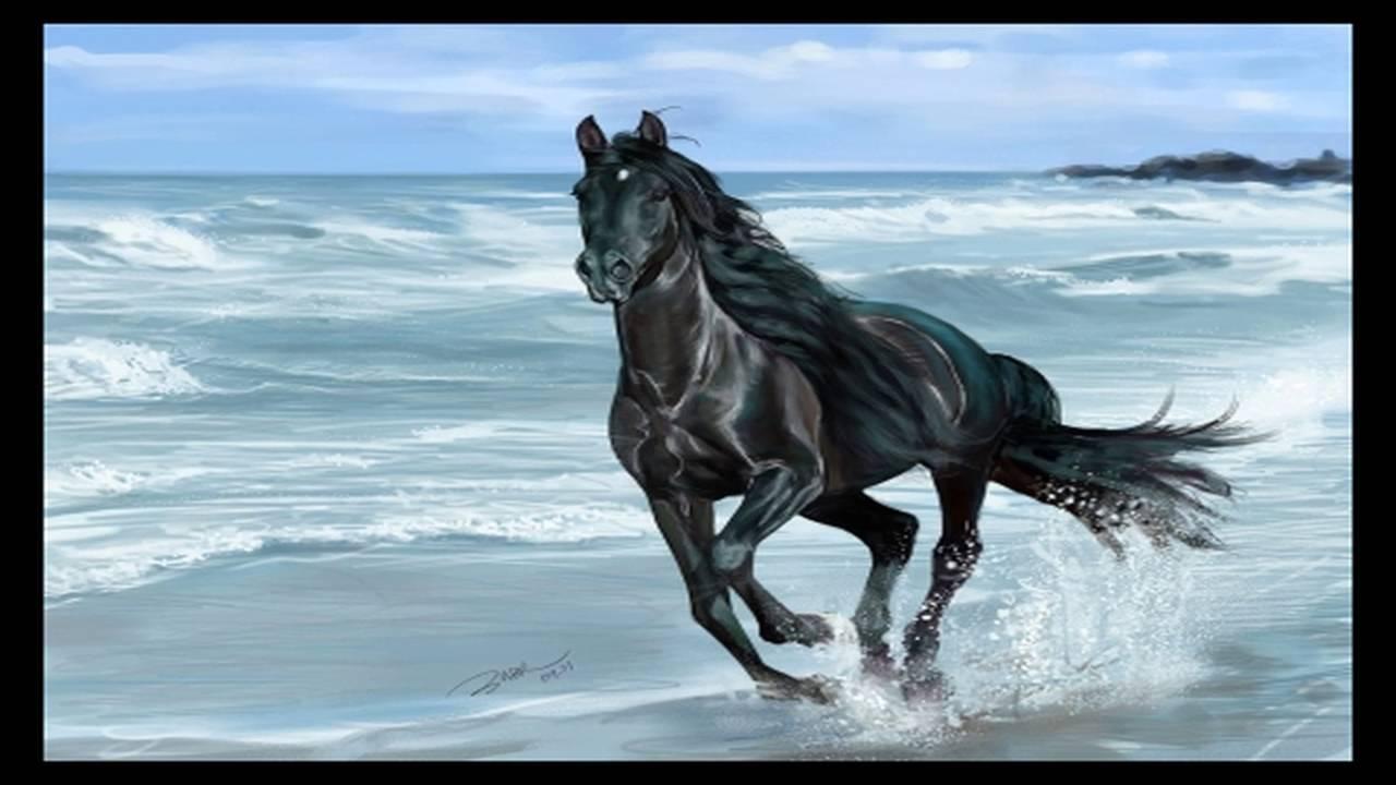 TOP 10 Cavalos Mais Lindos Do Mundo!