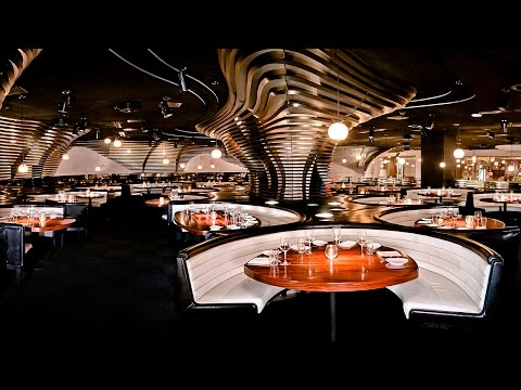 STK Restaurants Expanding in America, Europe Says ONE Group CEO