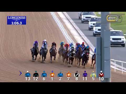 POINT OF ENTRY'S PLUS QUE PARFAIT PERFECT IN UAE DERBY (G2)