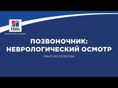 Вебинар на тему: «Позвоночник: неврологический осмотр». Лектор - Максим Селюгин