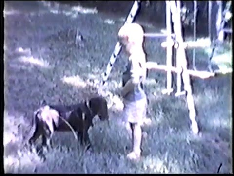 1968 - 1973 home movies (8mm)