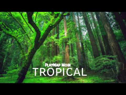 PlayWap Mobi - ZoMbiE AnImAlS (ft.ElenaTrap Music)