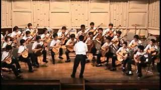 2005b l v beethoven symphony no 5 運命 guitar orchestra