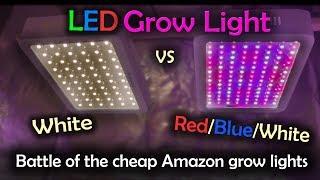 White LED vs Red Blue White LED Grow Test - Amazon Lights (Intro)