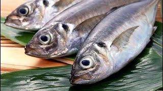 5 РЕЦЕПТОВ  РЫБЫ,  Вкусная Рыба//Быстрые Рецепты
