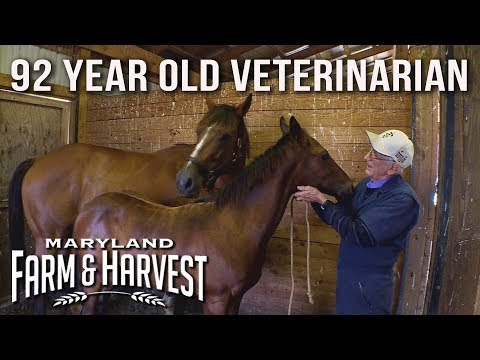 The 92-Year-Old Horse Vet Who Loves His Work | Maryland Farm & Harvest