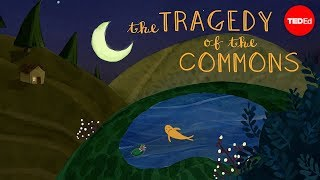 What is the tragedy of the commons? - Nicholas Amendolare by : TED-Ed