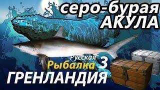 Акула Серо - бурая / РР3 [ Русская рыбалка 3.9 Гренландия]