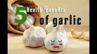 5 amazing health benefits of garlic ...
