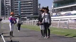 2016年10月15日 川崎競馬祭り2016 ホースジャンピングショー ビービート...