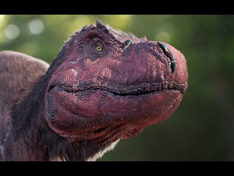 The Reality of the New T.rex Scale Impressions