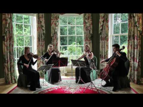 Young And Beautiful (Lana Del Rey) Wedding String Quartet
