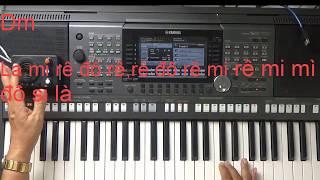 20 Intro mẫu Tone Am và C