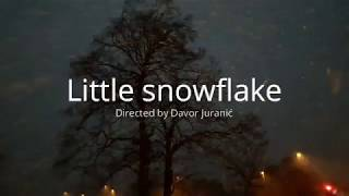 Little snowflake - snijeg u Celbridgeu, Irska 2018.