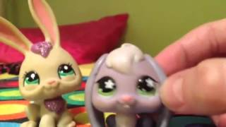 Littlest pet shops beef seeds royals