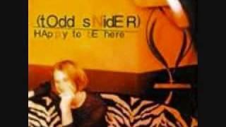 D B Cooper Todd snider