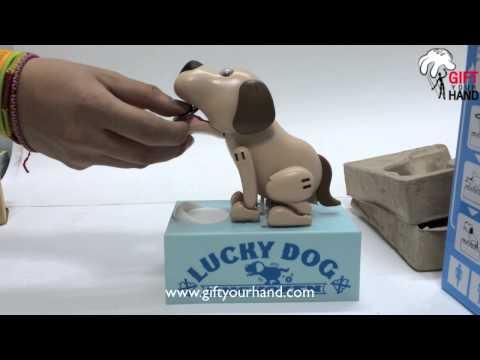 กระปุกออมสินสุนัขจอมตะกละ Lucky Dog UN-CHO-KEN