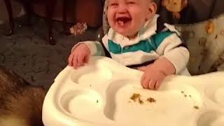 Funny Baby with dog v - 3M Fun and Fails - Who is your friend 3...