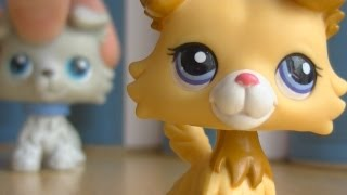 ♥ LPS Troublemaker - Episode 4 (Memories) ♥
