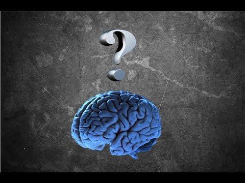 Как влияет физическая тренировка на мозг