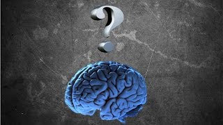 Как влияет физическая тренировка на мозг(, 2015-10-23T19:05:00.000Z)