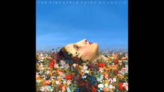 The Pineapple Thief - Coming Home