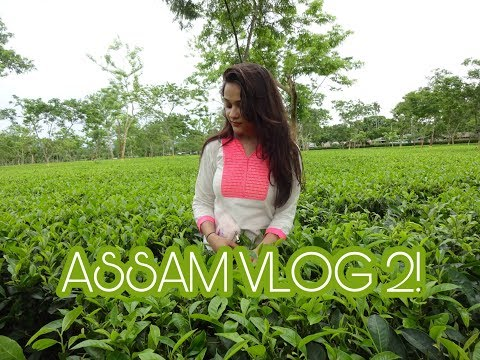 ASSAM VLOG ||TRAVEL DAIRIES|| PART 2