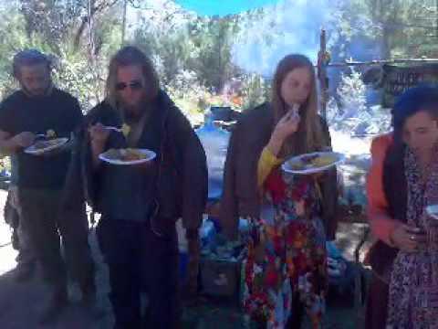 Sharing Krishna Food and Music at the Ocala Rainbow Gathering 2016