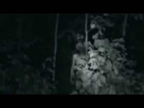 UFO 2013 - Grey Aliens Caught on tape - Ultimate Edition (HD)_(720p)