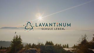 LAVANTINUM - Schule Leben