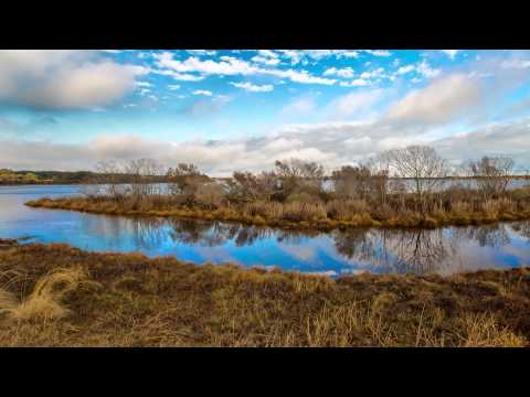 Winter at Chincoteague & Blackwater National Wildlife Refuge 國家野生動物保護區的冬天