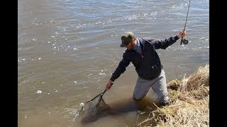 how to land fish with a fly rod - fly fishing