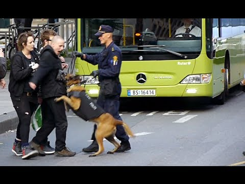 Police against anarchists in Oslo, Norway