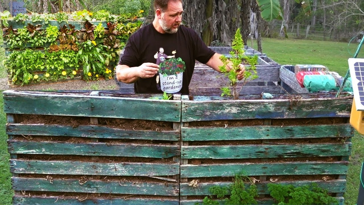 What Happened To This Grow Wall Vertical Vegetable Garden Youtube