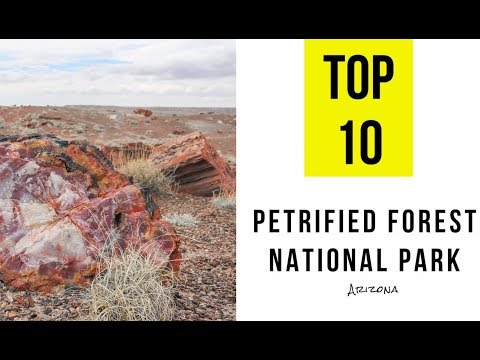 TOP 10. Things to Do in Petrified Forest National Park, Arizona
