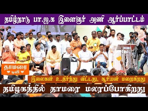 Tamil Nadu BJP Youth Wing Stage Protest Demanding Alcohol Prohibition, Local Body Election