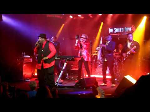 Brian Culbertson Funk Tour 2016